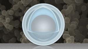 Schema des Nanopartikels mit Schale und Dotter: einfache Herstellung, günstige Materialien (Bild: Christine Daniloff/MIT)